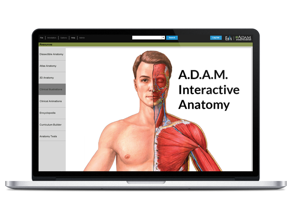 A.D.A.M interactive anatomy tool in the Applied Anatomy and Physiology program